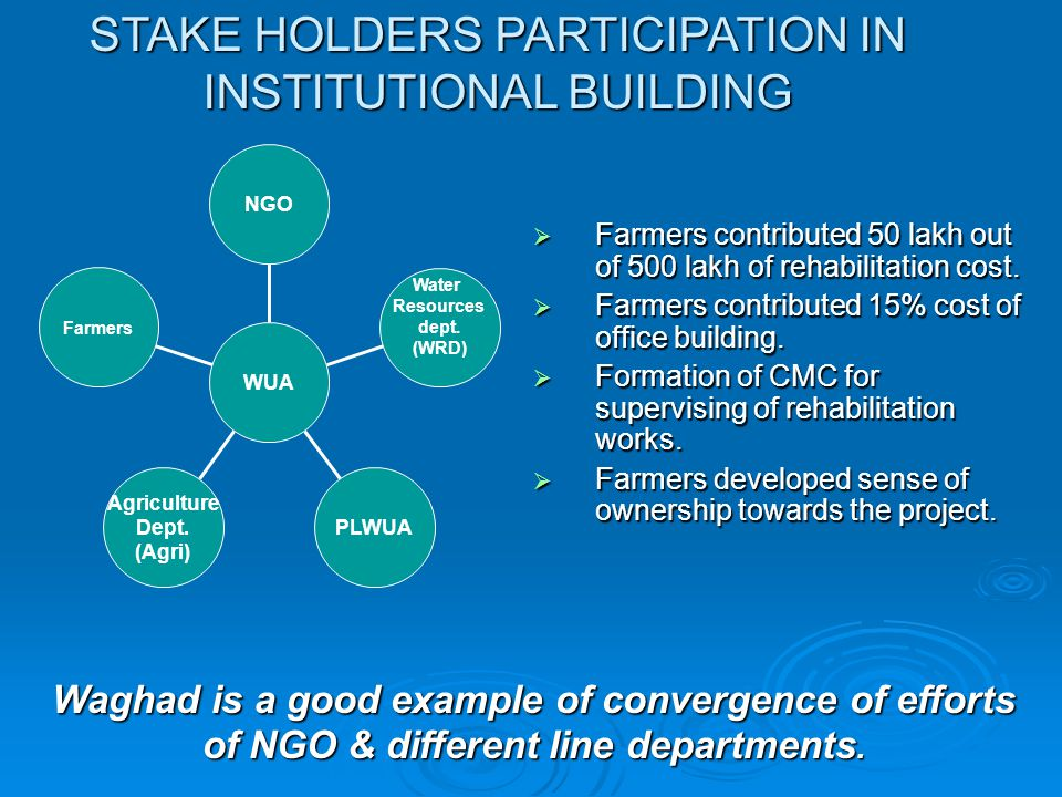 STAKE HOLDERS PARTICIPATION IN INSTITUTIONAL BUILDING