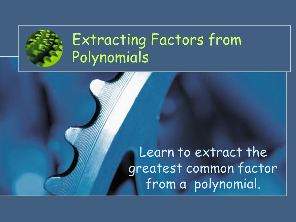 Extracting Factors from Polynomials