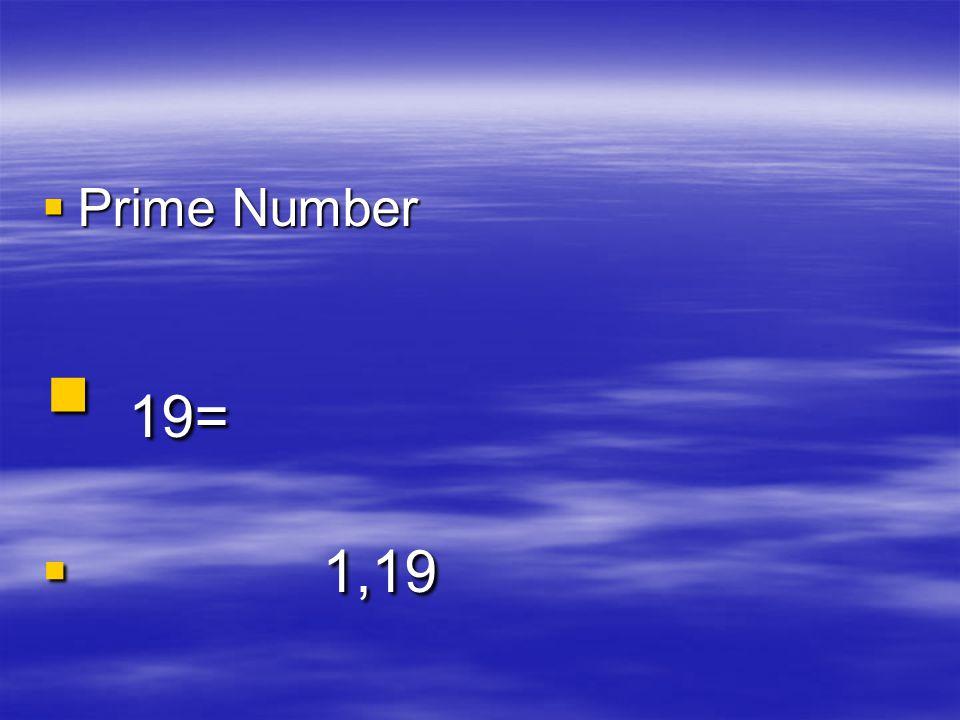 Prime Number 19= 1,19