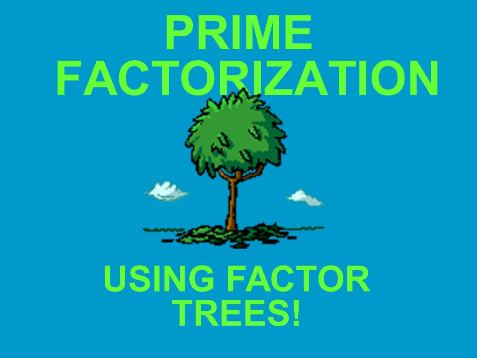 PRIME FACTORIZATION USING FACTOR TREES!