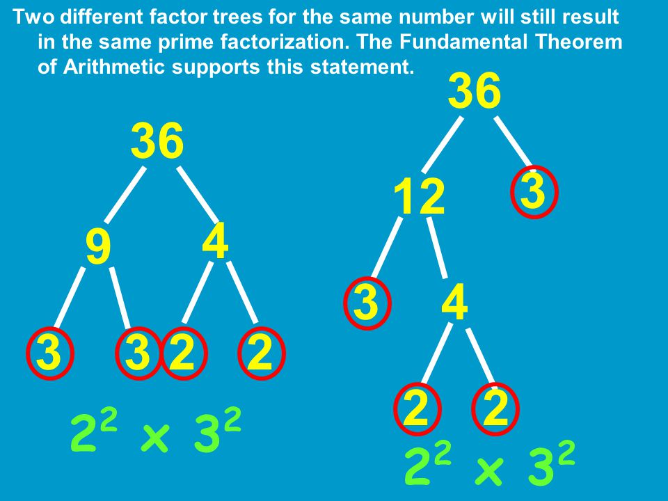 Two different factor trees for the same number will still result in the same prime factorization. The Fundamental Theorem of Arithmetic supports this statement.