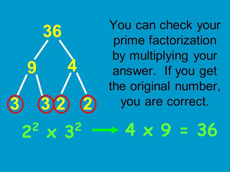 You can check your prime factorization by multiplying your answer