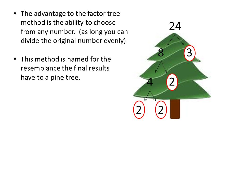 The advantage to the factor tree method is the ability to choose from any number. (as long you can divide the original number evenly)