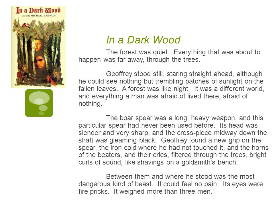 In a Dark Wood The forest was quiet. Everything that was about to happen was far away, through the trees.