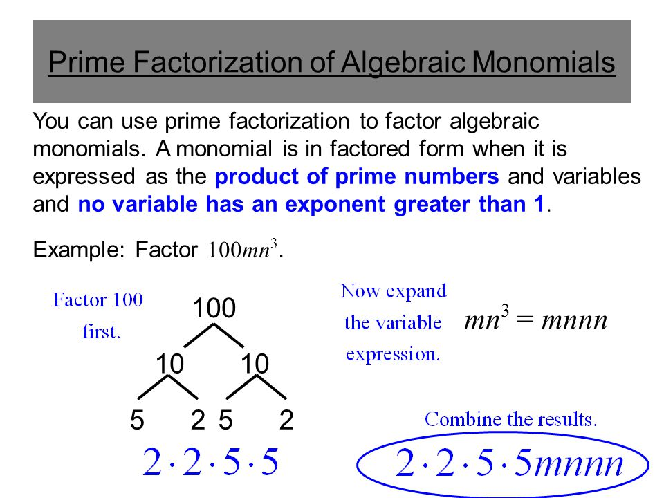 Prime Factorization of Algebraic Monomials