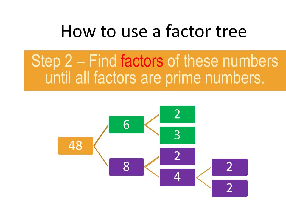 How to use a factor tree Step 2 – Find factors of these numbers