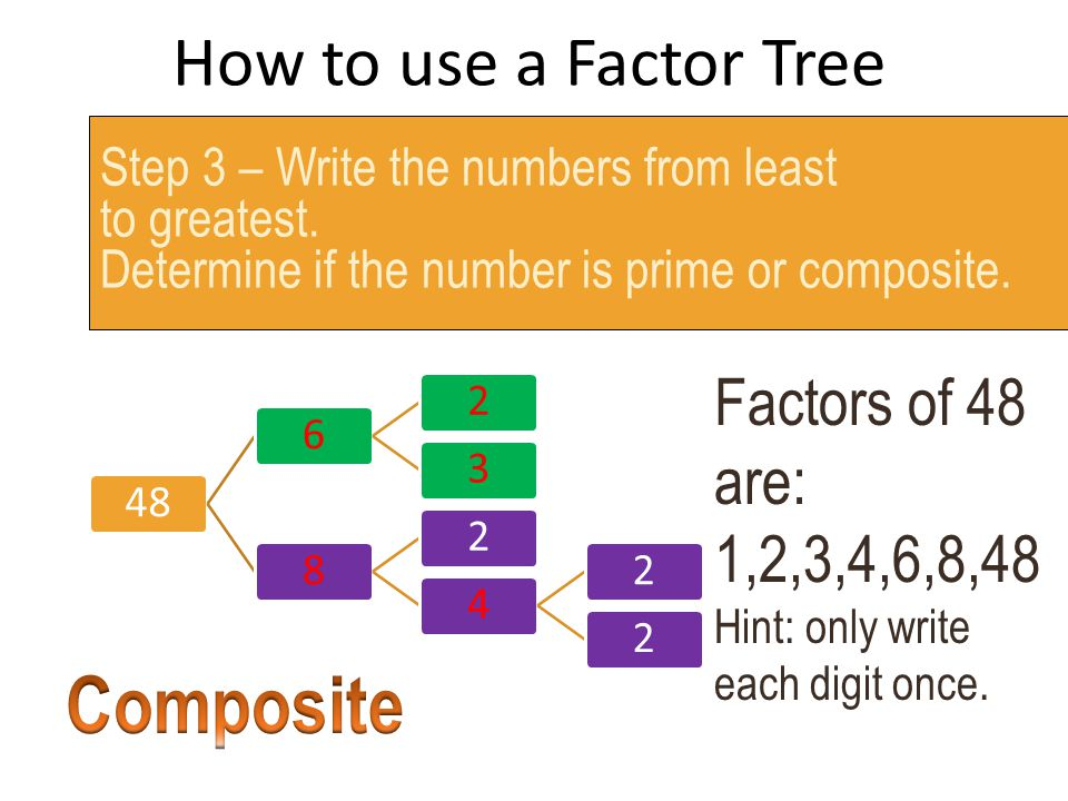 Composite How to use a Factor Tree Factors of 48 are: 1,2,3,4,6,8,48