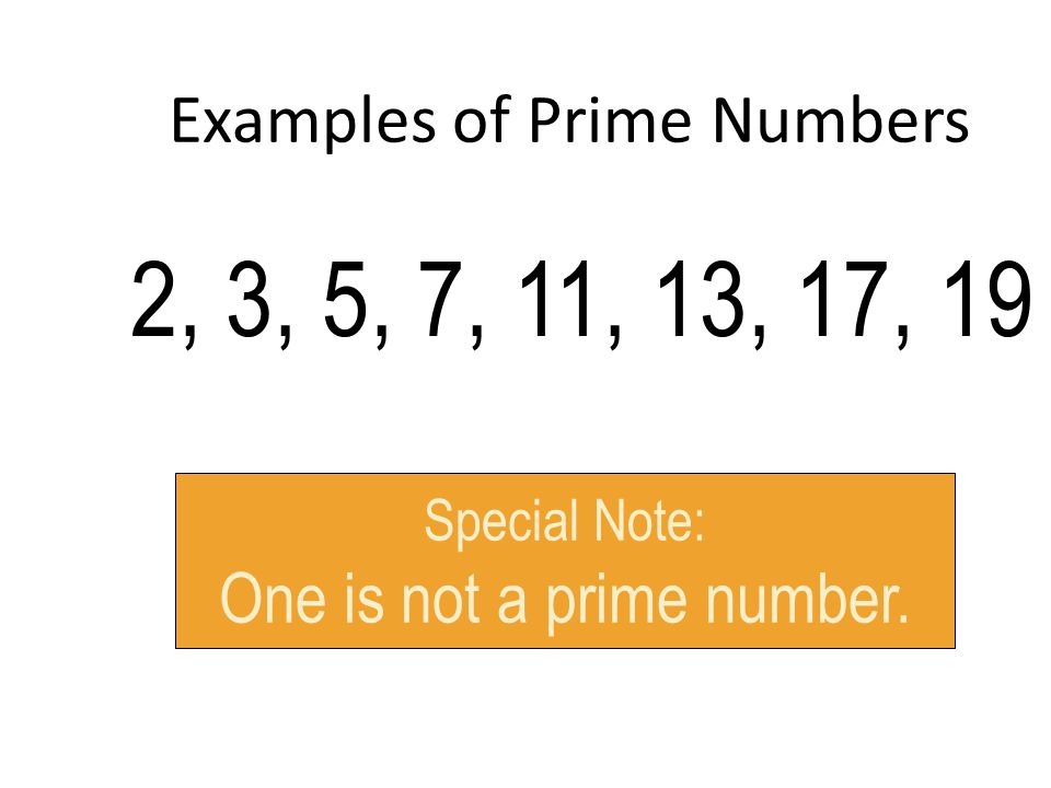 Examples of Prime Numbers