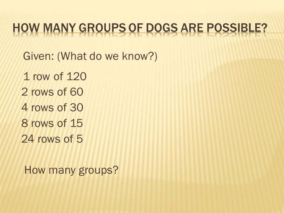 How many groups of dogs are possible
