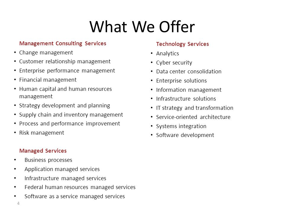 What We Offer Technology Services Management Consulting Services