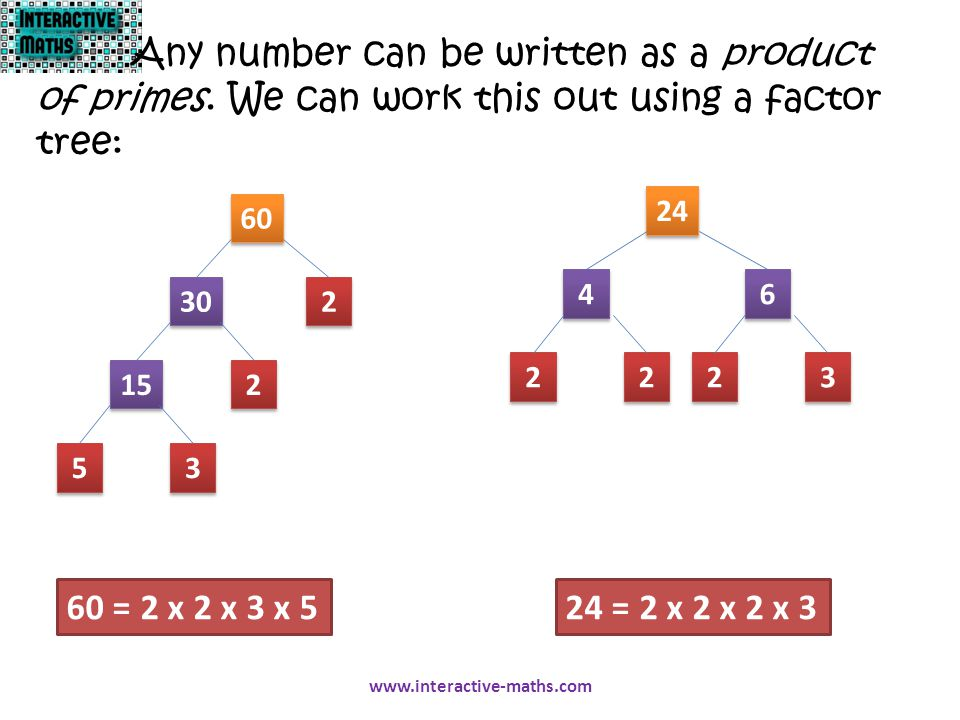 Any number can be written as a product of primes