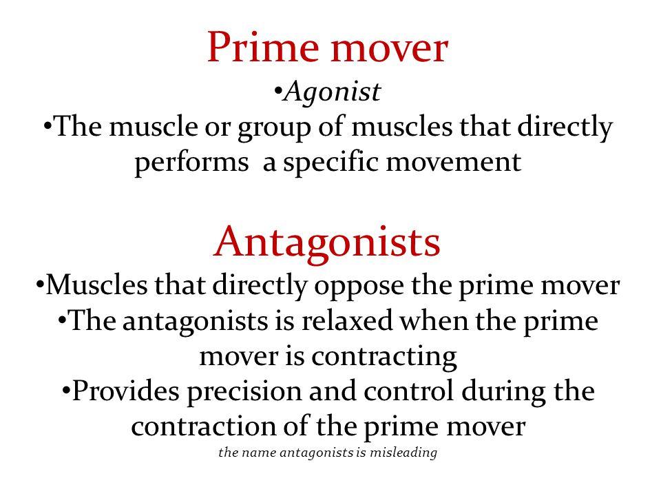 Prime mover Antagonists Agonist