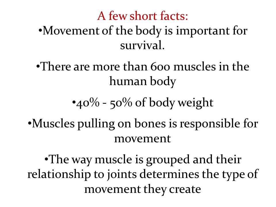 Movement of the body is important for survival.