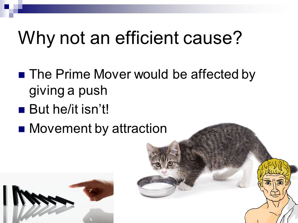 Why not an efficient cause