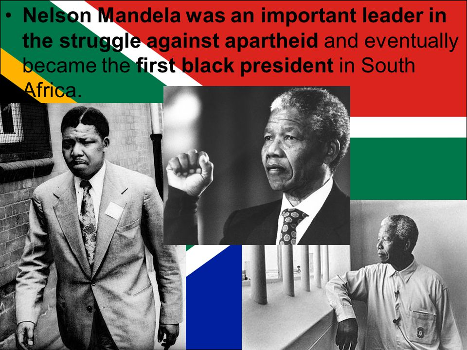 Nelson Mandela was an important leader in the struggle against apartheid and eventually became the first black president in South Africa.