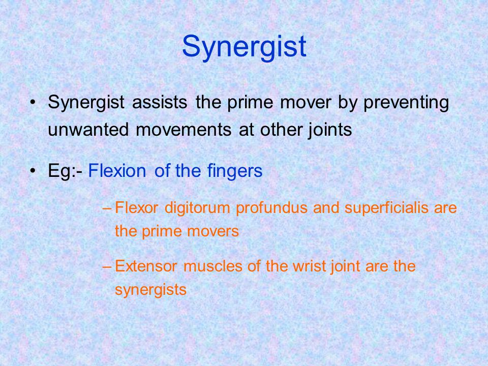 Synergist Synergist assists the prime mover by preventing unwanted movements at other joints. Eg:- Flexion of the fingers.