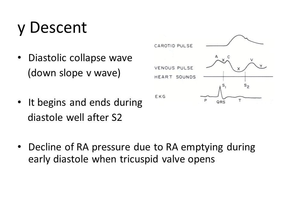 y Descent Diastolic collapse wave (down slope v wave)