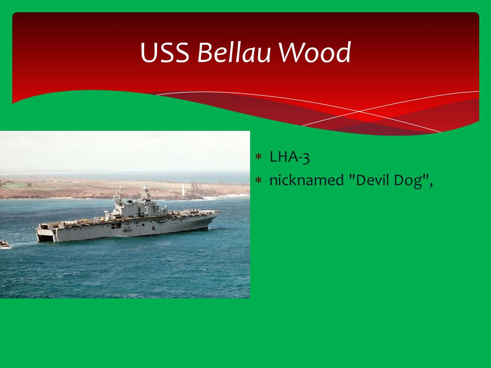 USS Bellau Wood LHA-3 nicknamed Devil Dog ,