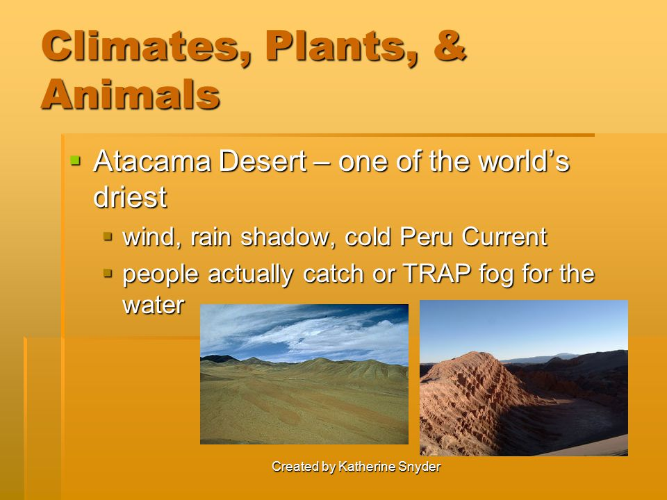 Climates, Plants, & Animals