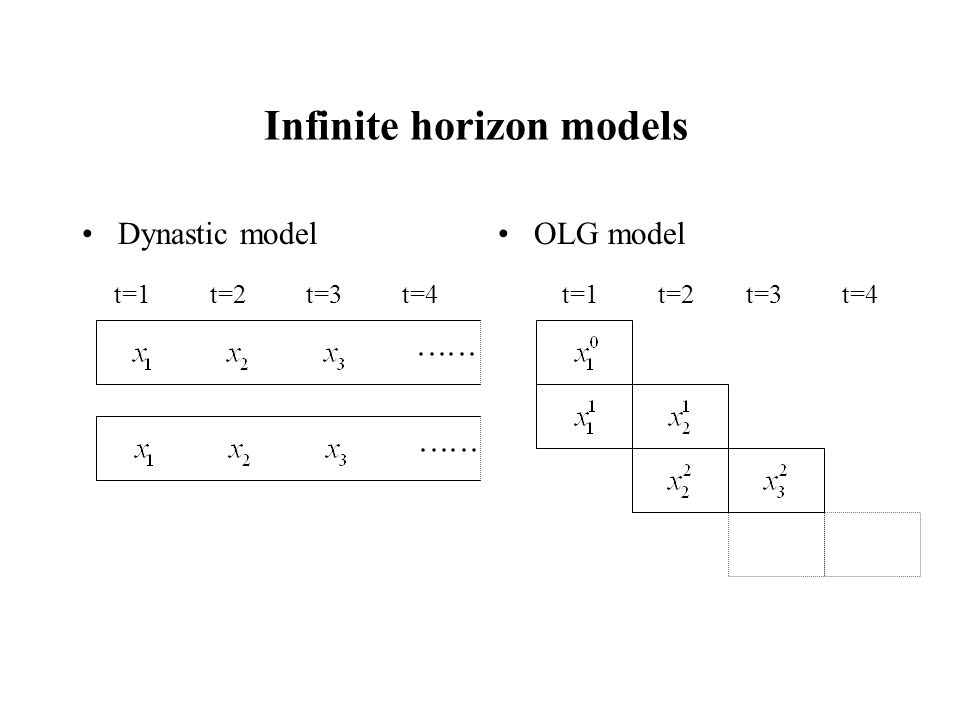 Infinite horizon models