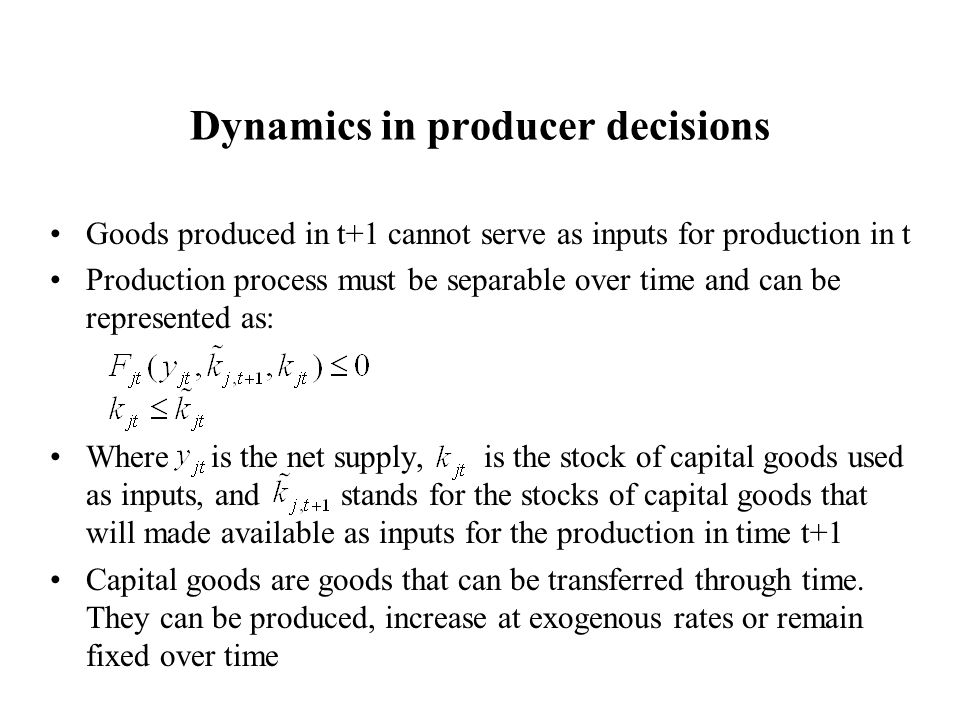 Dynamics in producer decisions