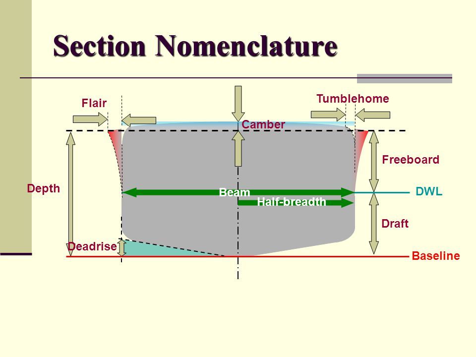 Section Nomenclature Tumblehome Flair Camber Freeboard Depth Beam DWL