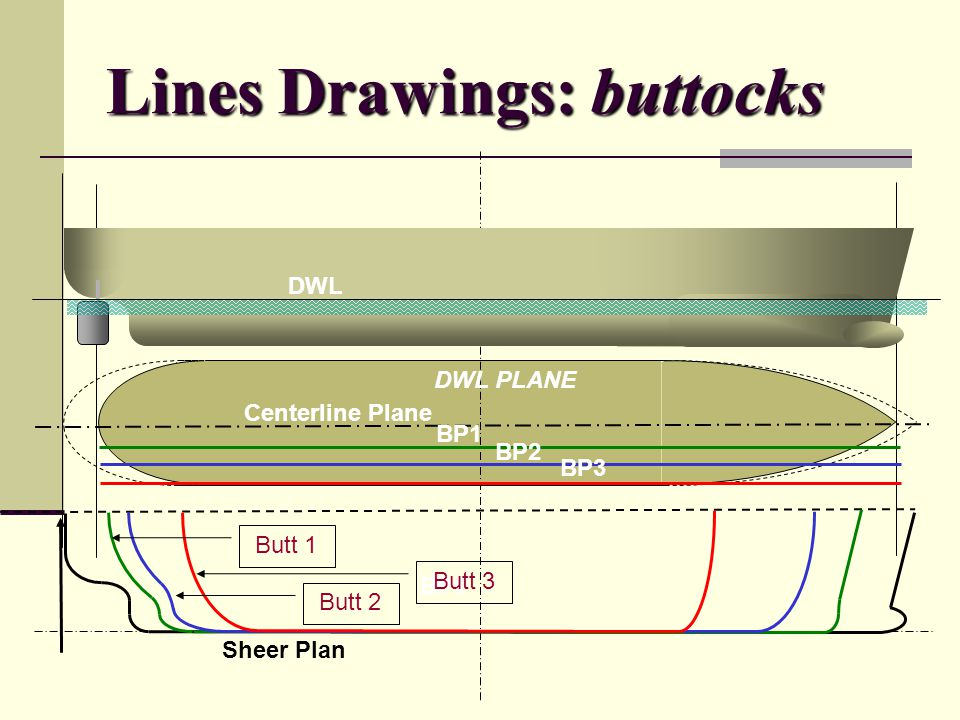 Lines Drawings: buttocks