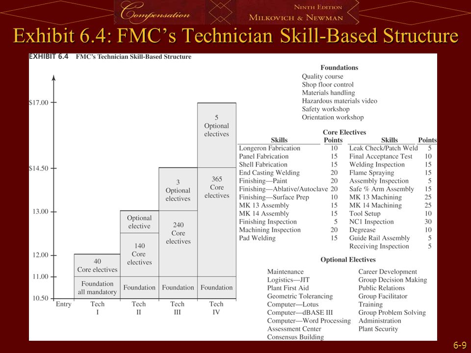 Exhibit 6.4: FMC's Technician Skill-Based Structure
