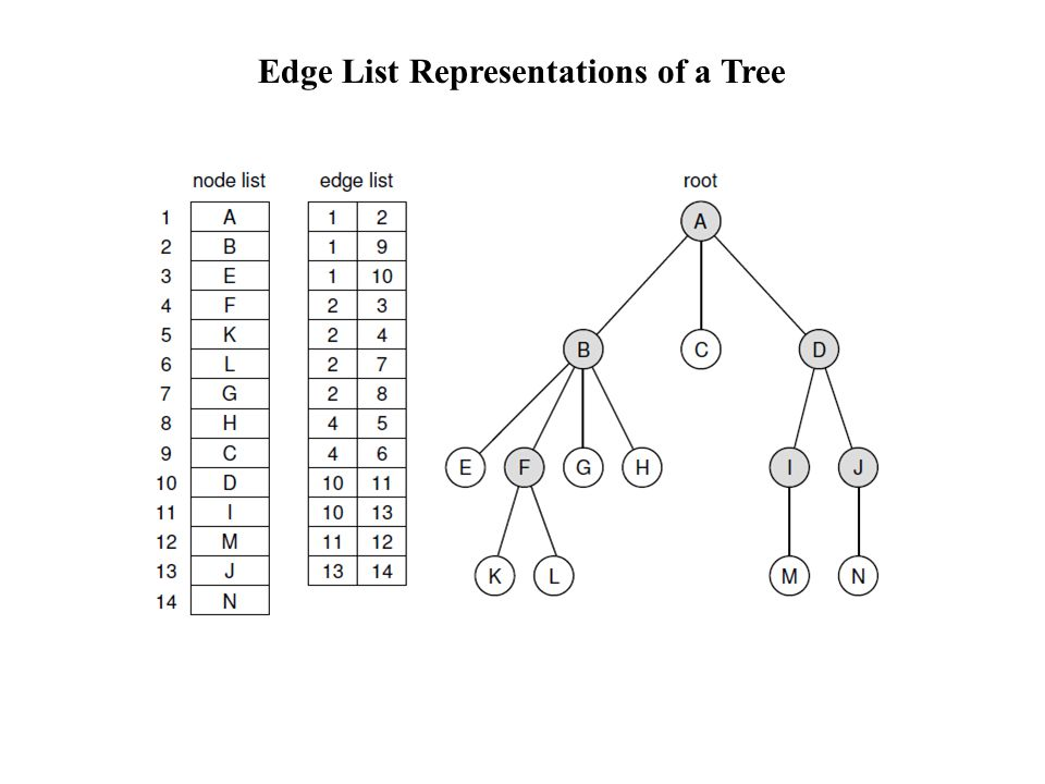 Edge List Representations of a Tree
