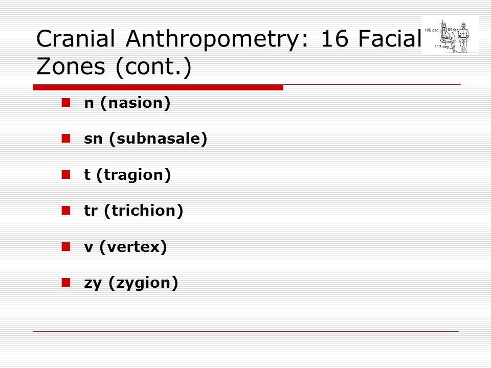 Cranial Anthropometry: 16 Facial Zones (cont.)