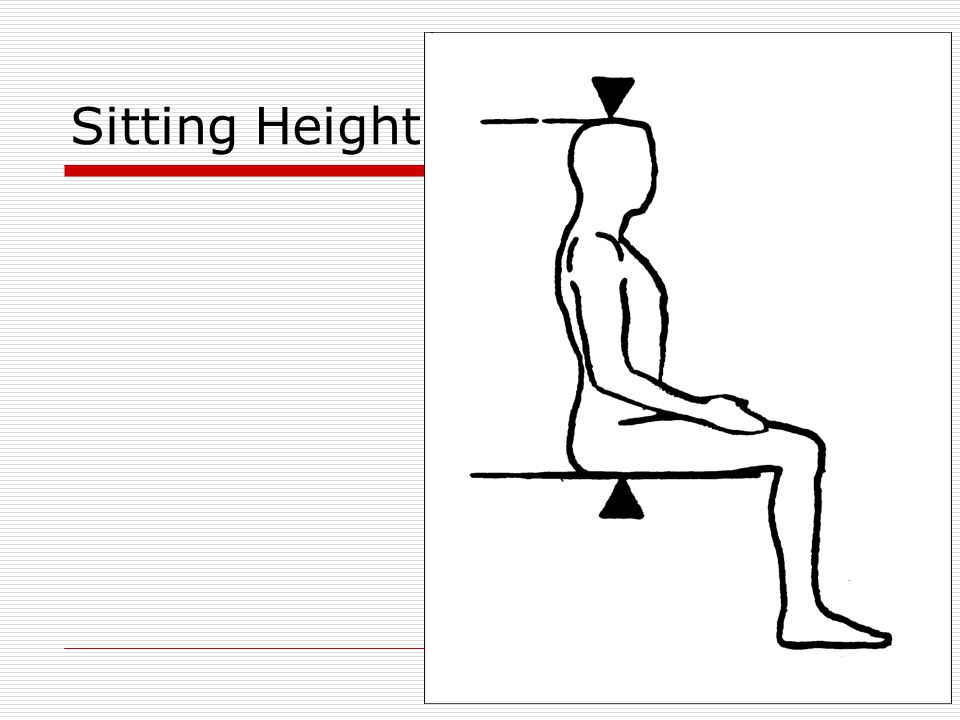 Sitting Height