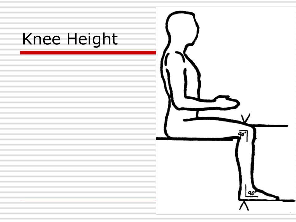 Knee Height