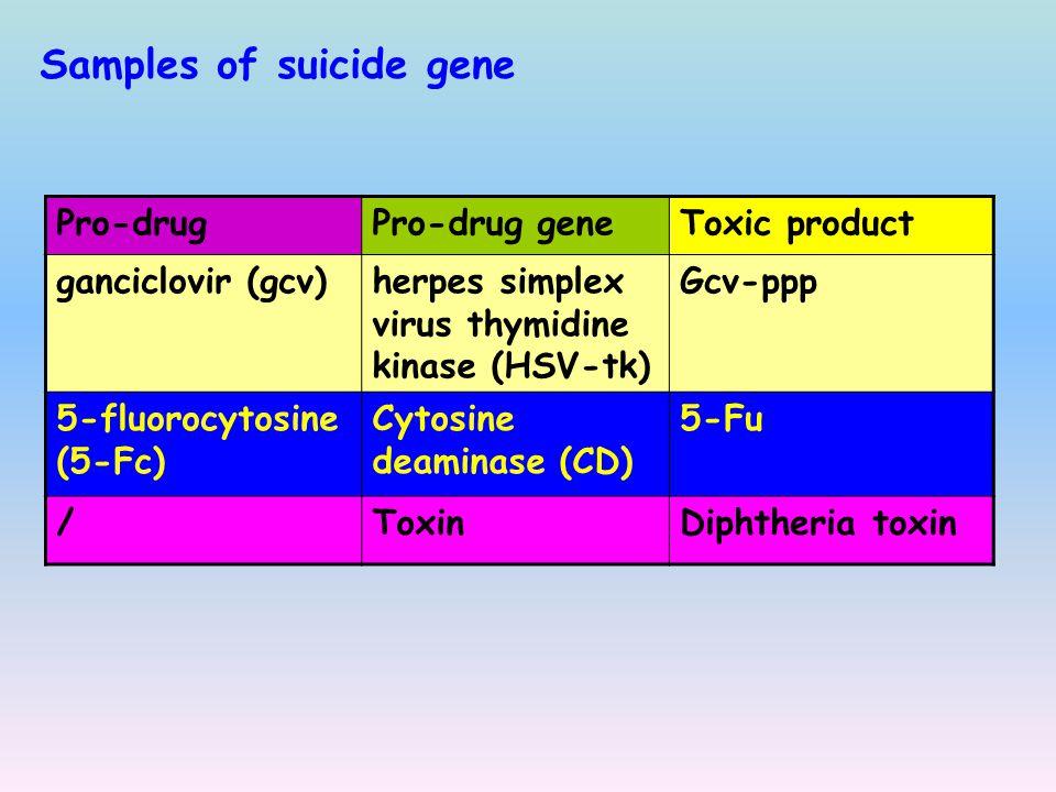 Samples of suicide gene