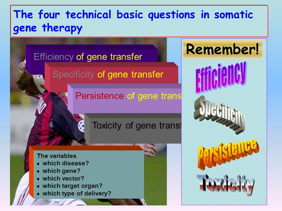 Remember! Efficiency Specificity Persistence Toxicity