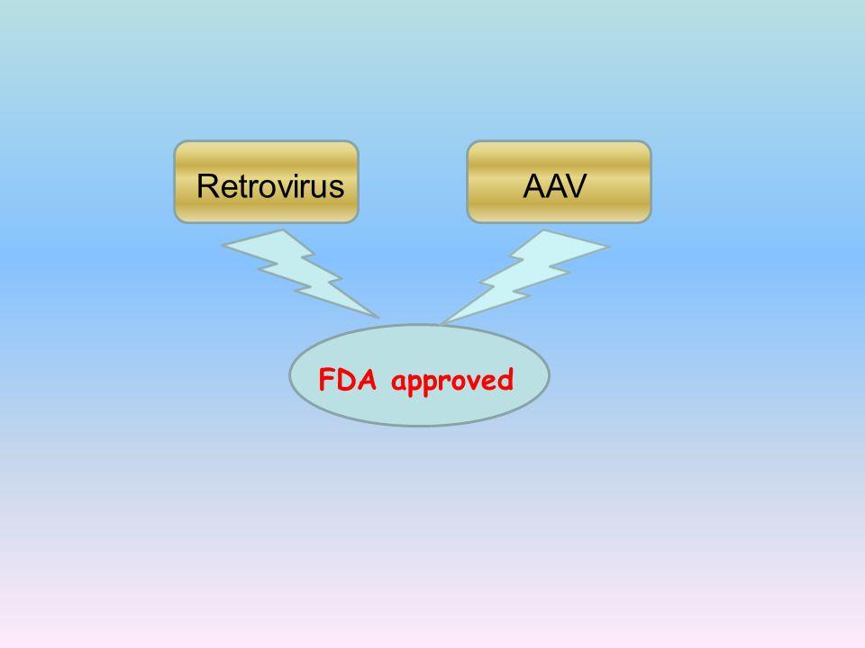 Retrovirus AAV FDA approved