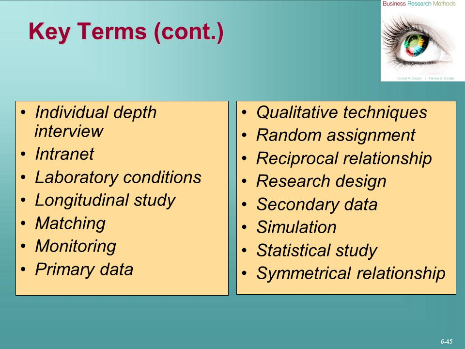 Key Terms (cont.) Individual depth interview Intranet