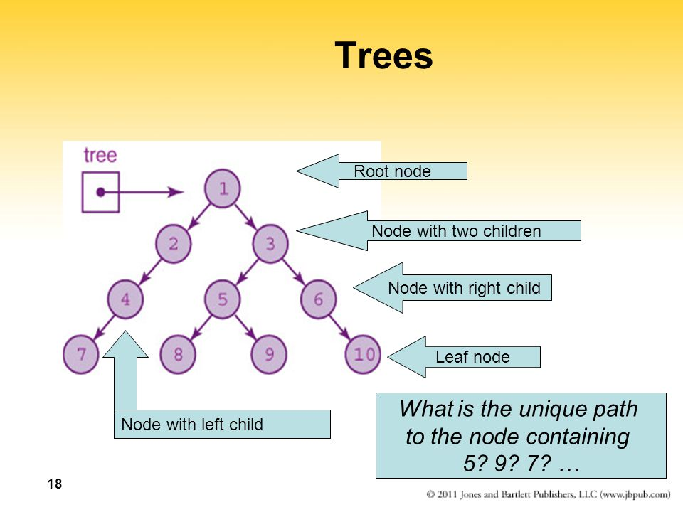 Trees What is the unique path to the node containing 5 9 7 …