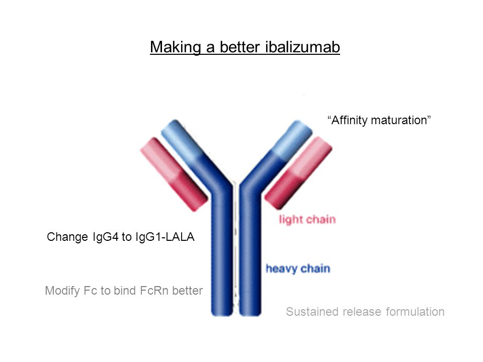 Making a better ibalizumab
