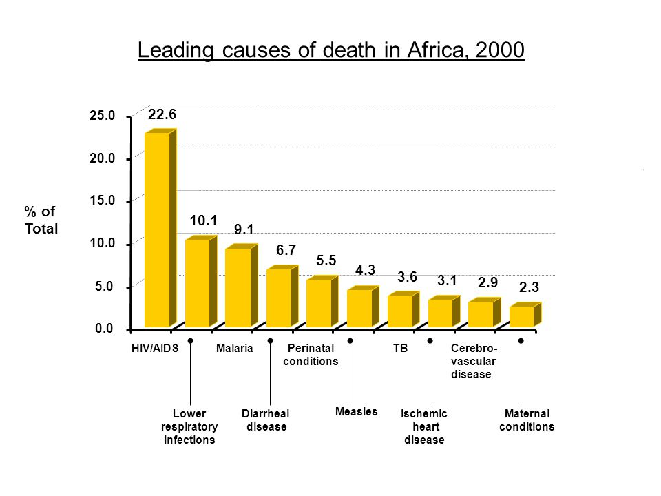 Leading causes of death in Africa, 2000