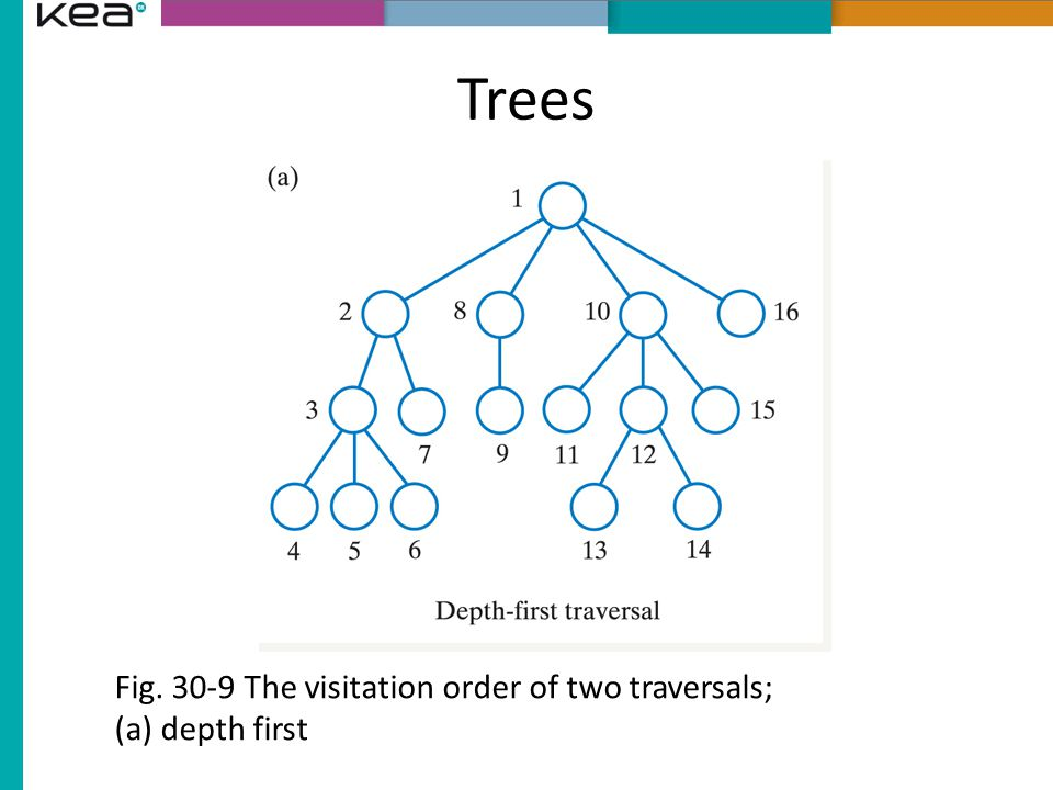Trees Fig. 30-9 The visitation order of two traversals; (a) depth first