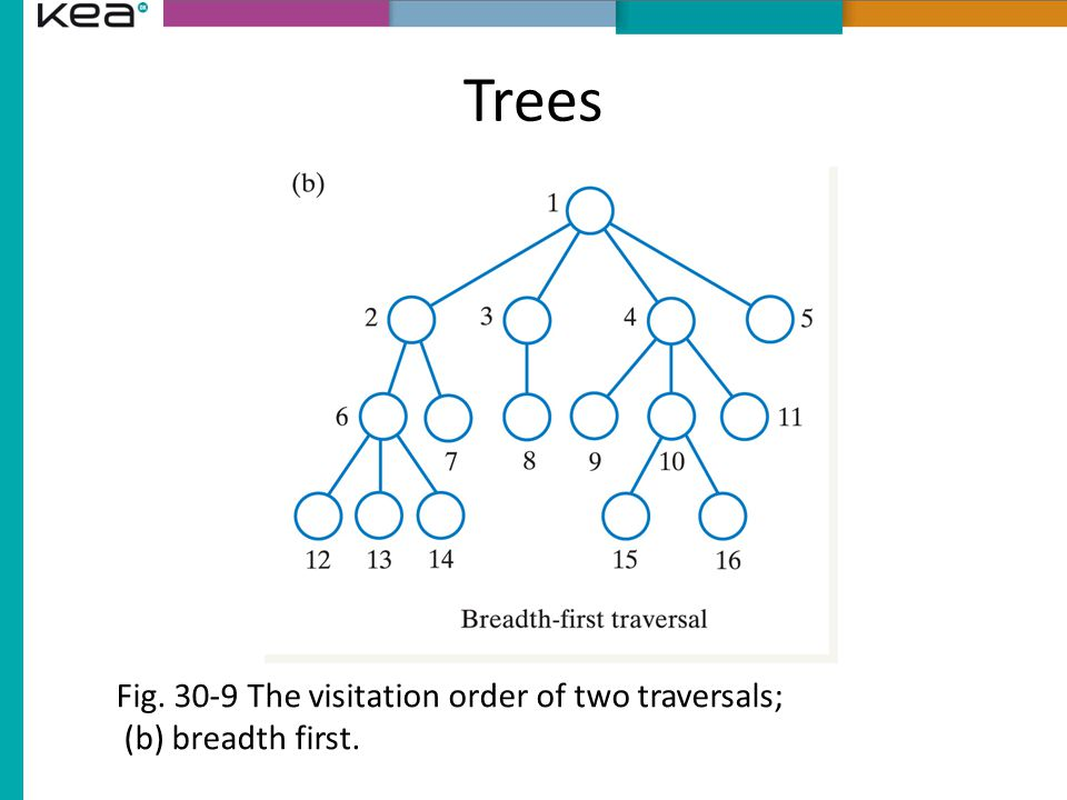 Trees Fig. 30-9 The visitation order of two traversals; (b) breadth first.