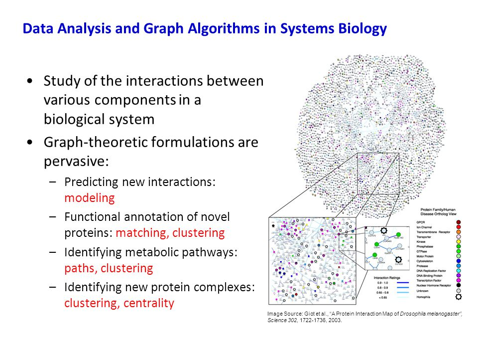 Data Analysis and Graph Algorithms in Systems Biology
