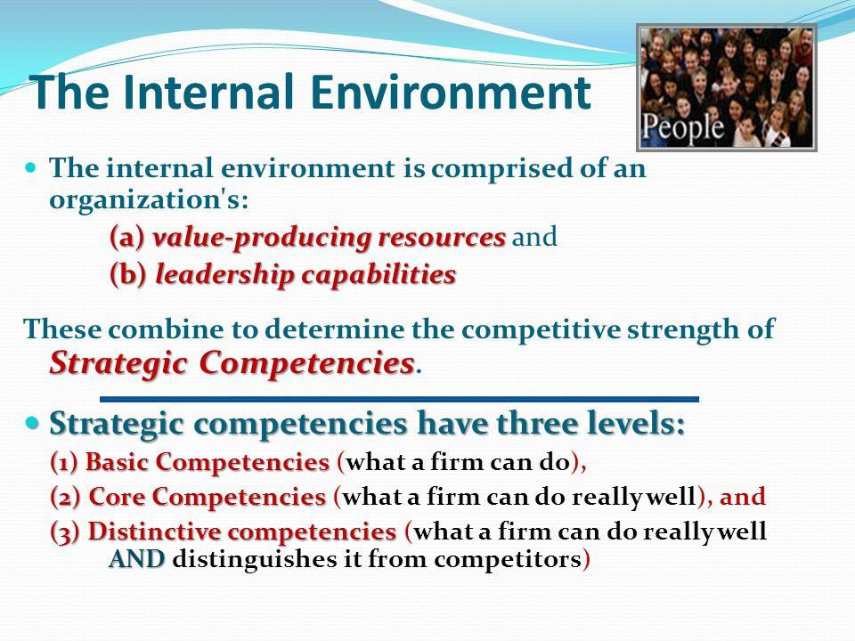 The Internal Environment