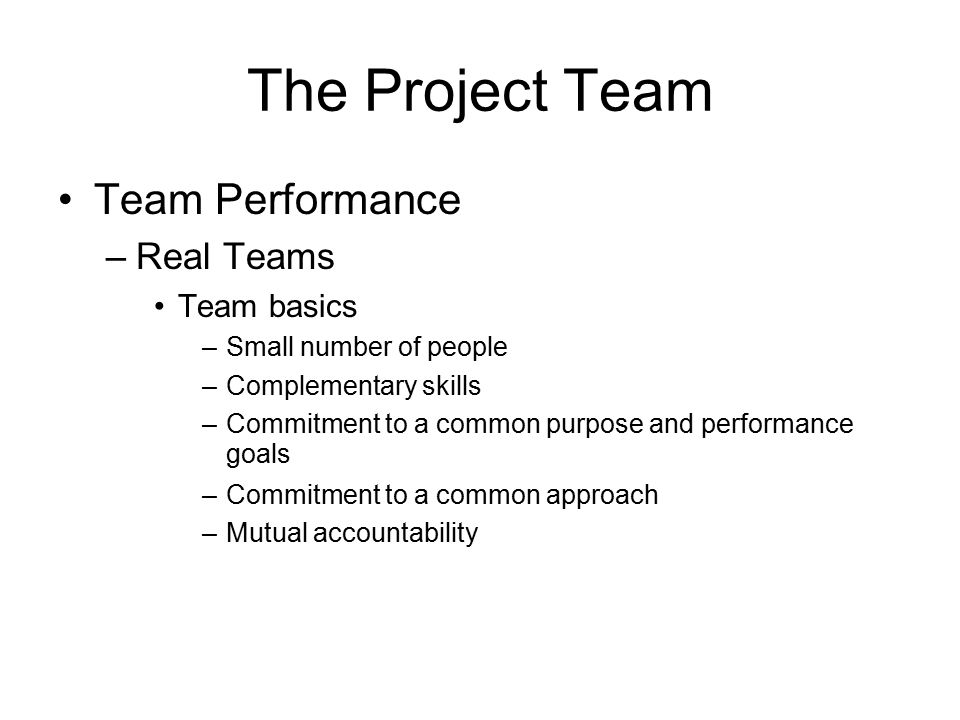 The Project Team Team Performance Real Teams Team basics