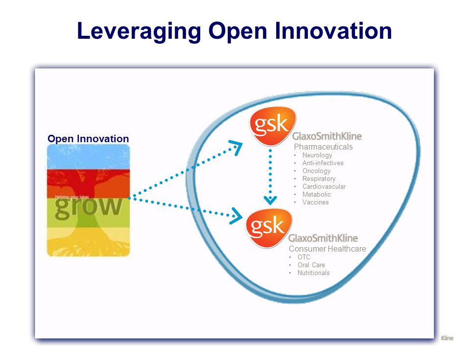 Leveraging Open Innovation