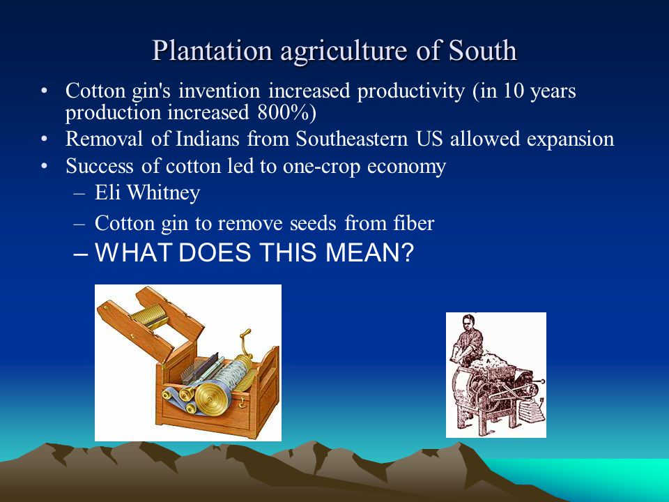 Plantation agriculture of South