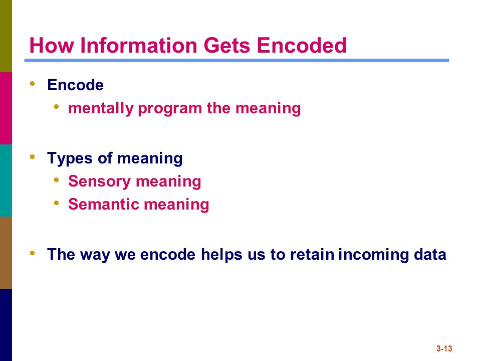 How Information Gets Encoded