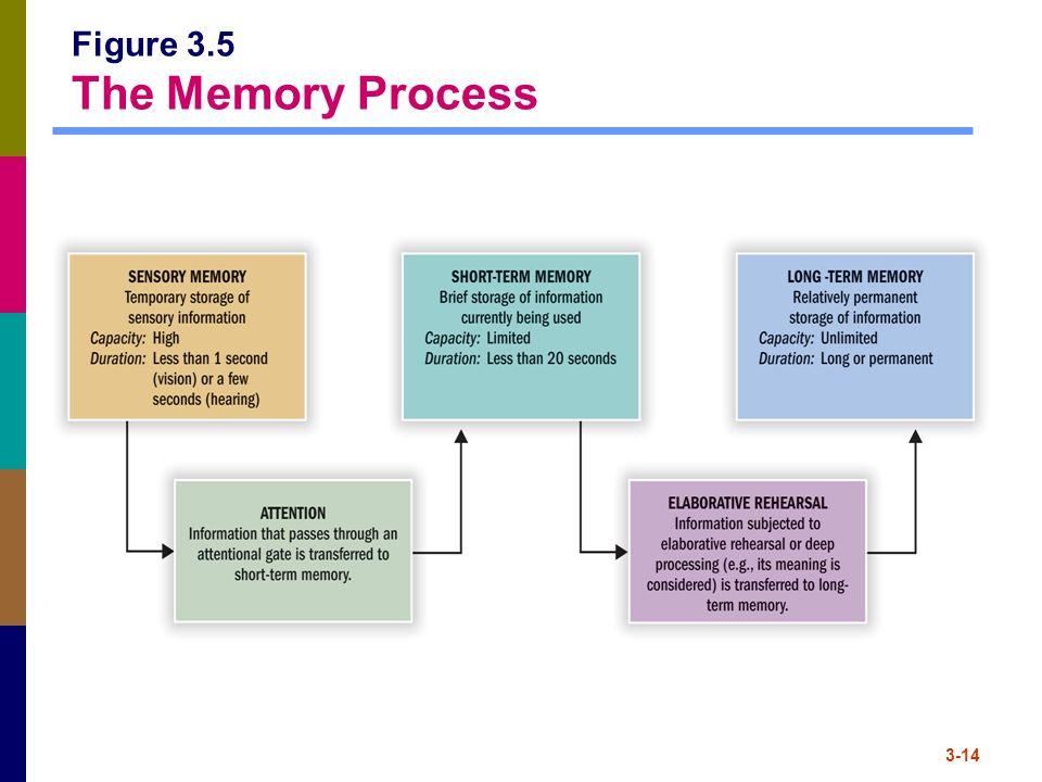 Figure 3.5 The Memory Process