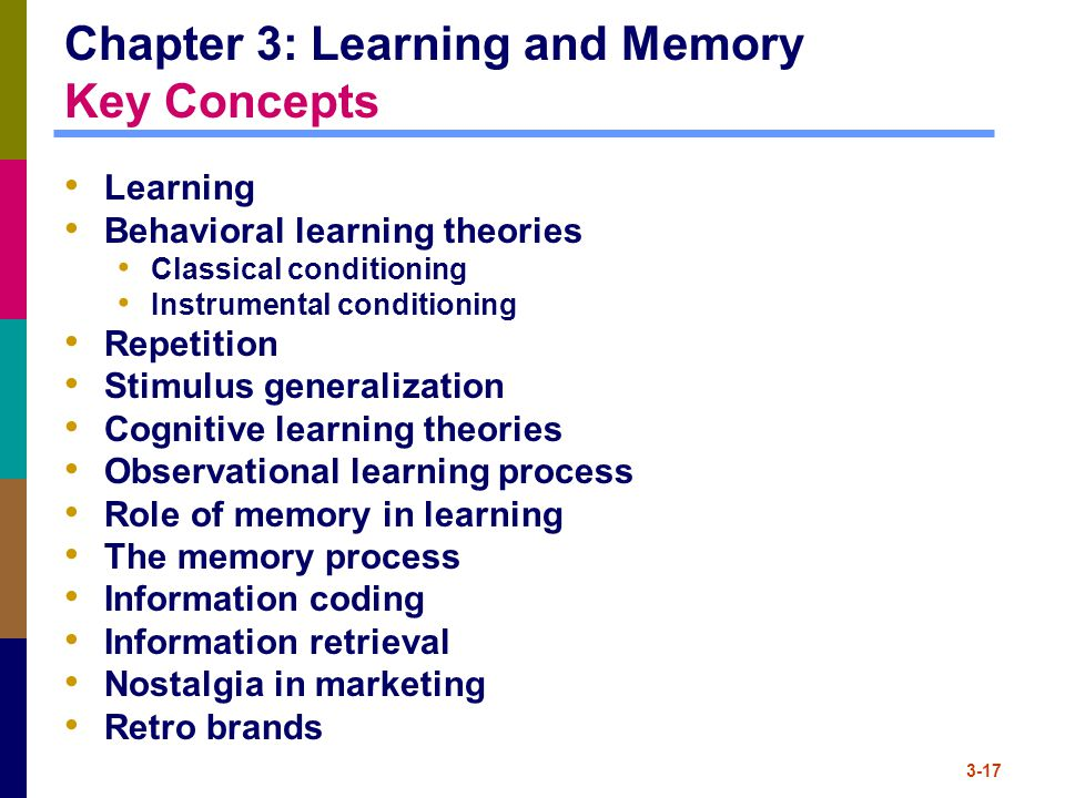 Chapter 3: Learning and Memory Key Concepts