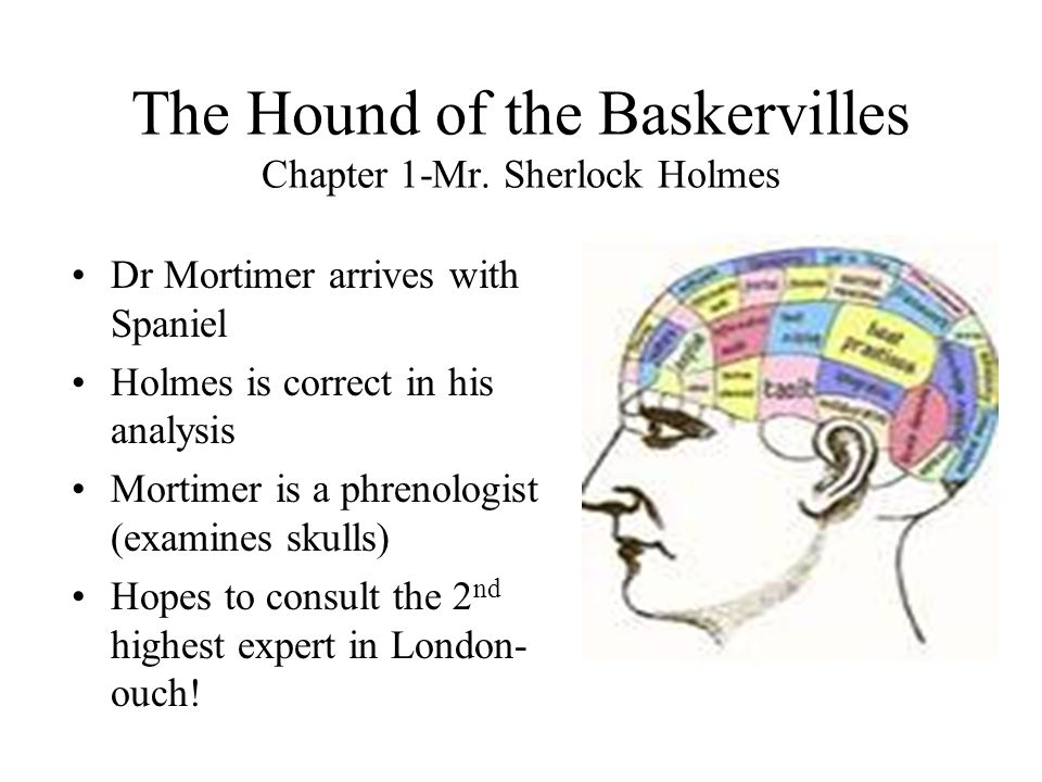 the hounds of the baskervilles essay The hound of the baskervilles is a story that combines the realms of the logical darwinian sciences and the supernatural there are many clear and apparent examples of these two topics throughout the story and they play a prevalent role in the theme of the book one example of a supernatural idea.